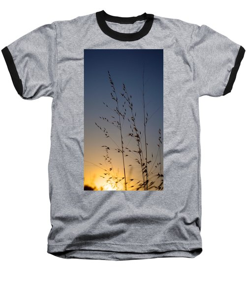 Foxtail Sunset Baseball T-Shirt