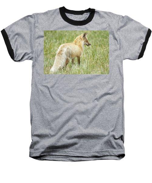 Foxy Lady Baseball T-Shirt
