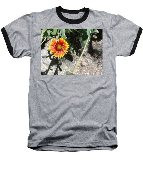 Fragile Floral Life On The Trail Baseball T-Shirt