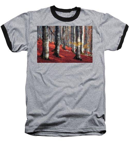 Fragility II Baseball T-Shirt