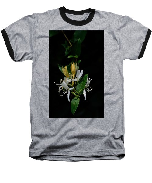 Fragrant Honeysuckle Baseball T-Shirt