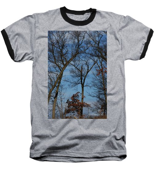 Baseball T-Shirt featuring the photograph Framed In Oak - 1 by Linda Shafer