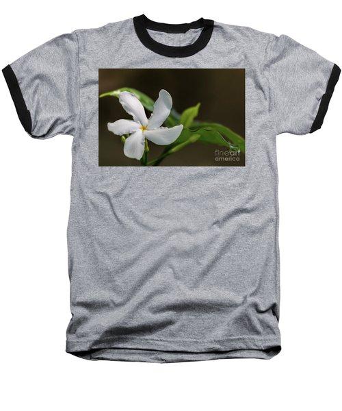 Frangipani Curves Baseball T-Shirt