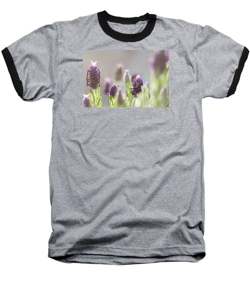 French Lavendar Buds Baseball T-Shirt by Mary Angelini