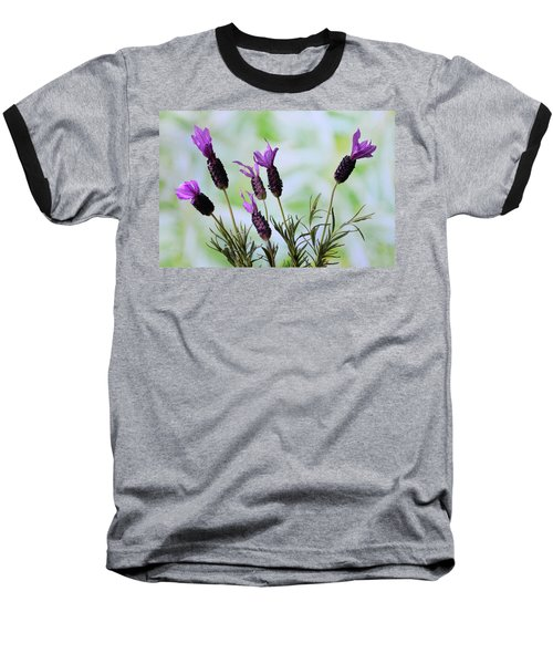 French Lavender Baseball T-Shirt by Terence Davis