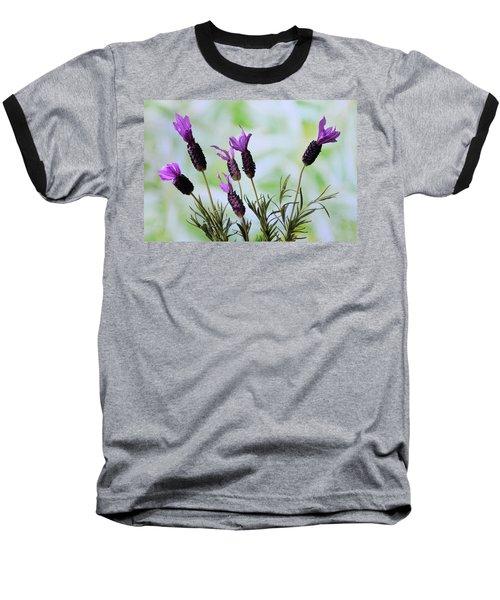 French Lavender Baseball T-Shirt