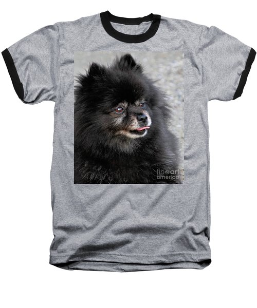 Baseball T-Shirt featuring the photograph Fresh Dog by Debbie Stahre