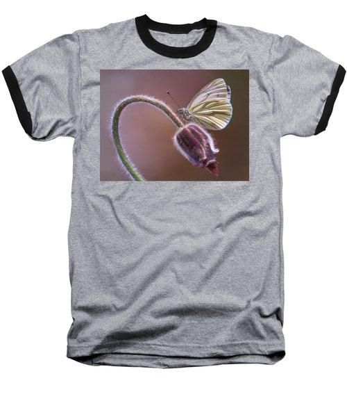 Fresh Pasque Flower And White Butterfly Baseball T-Shirt by Jaroslaw Blaminsky