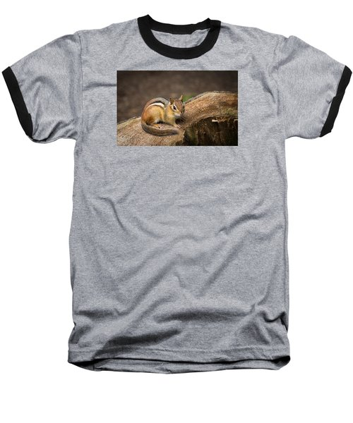 Friendly Chipmunk Baseball T-Shirt by Paul Miller