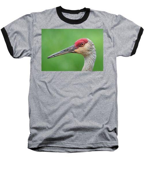 Friendly Fellow Baseball T-Shirt