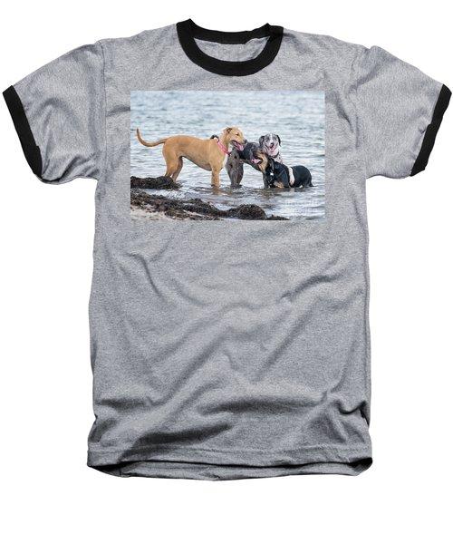 Friends Baseball T-Shirt by Stephanie Hayes