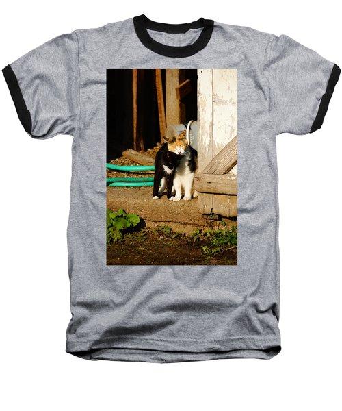 Friends Baseball T-Shirt by Steven Clipperton