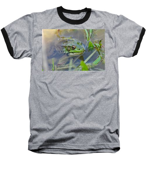 Frog Hiding In The Pond Baseball T-Shirt by Lisa DiFruscio