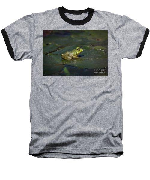 Froggy 2 Baseball T-Shirt by Douglas Stucky