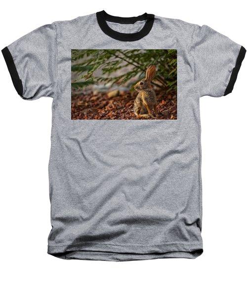 Baseball T-Shirt featuring the photograph Frontyard Bunny by Dan McManus
