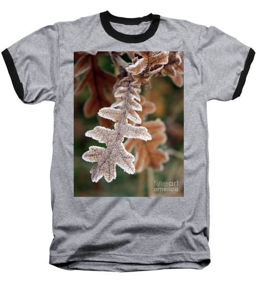 Frost Covered Oak Leaf Baseball T-Shirt