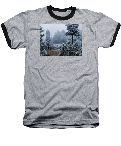 Frosted Baseball T-Shirt by Alana Thrower