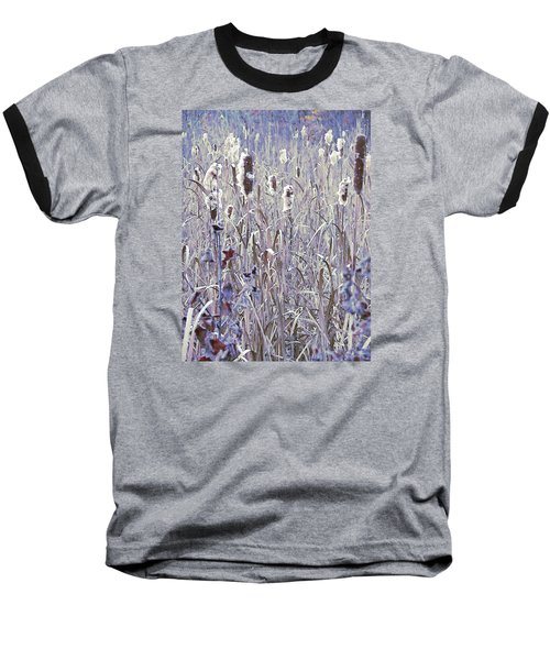 Frosted Cattails In The Morning Light Baseball T-Shirt by Joy Nichols