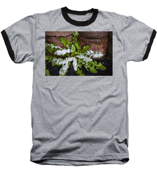 Baseball T-Shirt featuring the photograph Frosted Dandelion Leaves by Deborah Smolinske