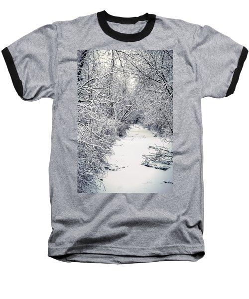 Frosted Feeder Baseball T-Shirt