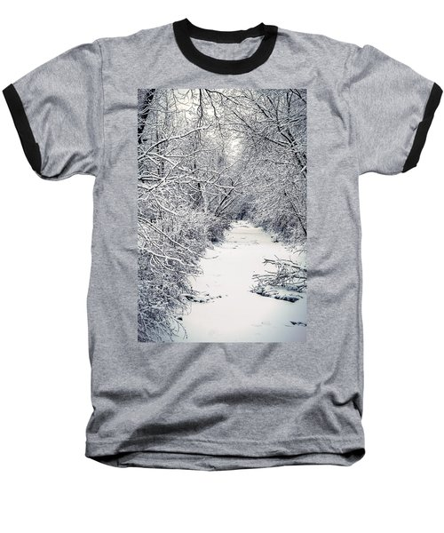 Frosted Feeder Baseball T-Shirt