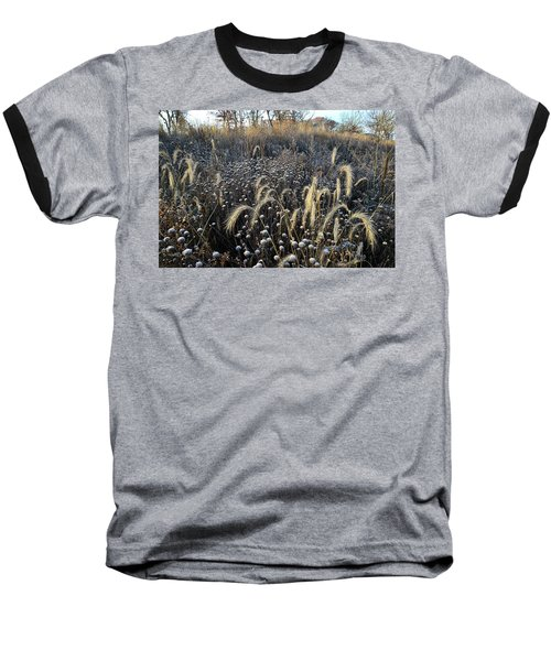Frosted Foxtail Grasses In Glacial Park Baseball T-Shirt