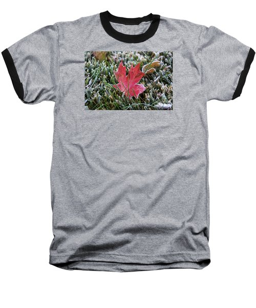 Frosted Maple Leaf  Baseball T-Shirt by Yumi Johnson