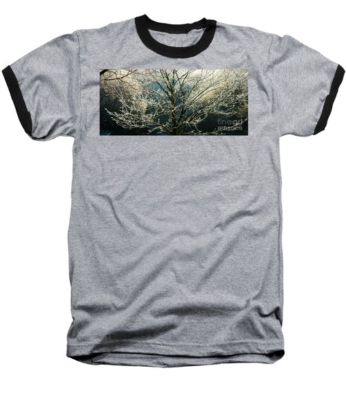 Frosted Trees Baseball T-Shirt
