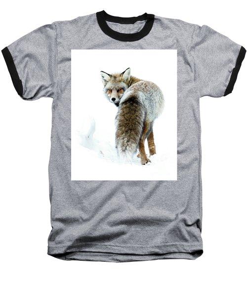 Frosty Fox Baseball T-Shirt