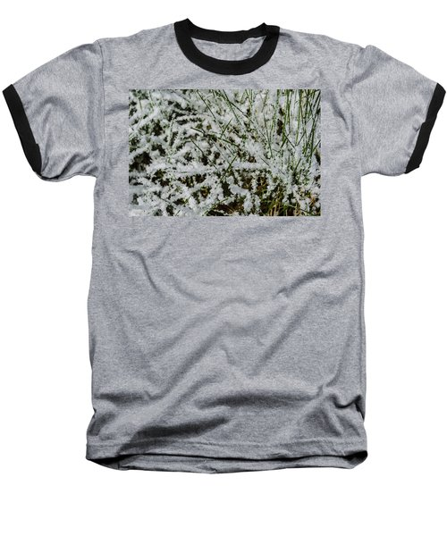 Frosty Grass Baseball T-Shirt