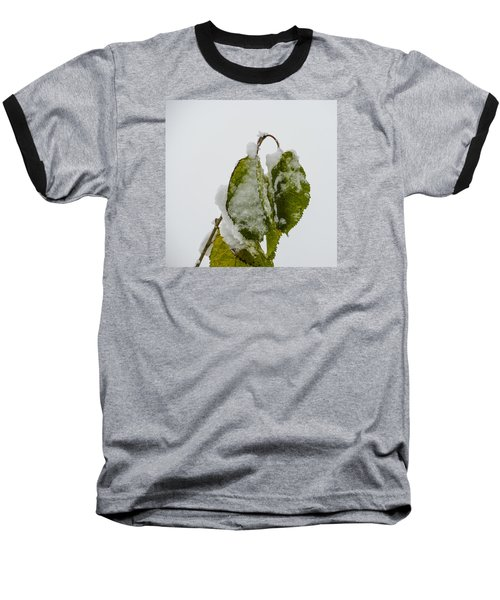 Baseball T-Shirt featuring the photograph Frosty Green Leaves by Deborah Smolinske
