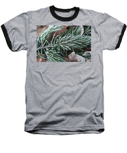 Frosty Pine Branch Baseball T-Shirt