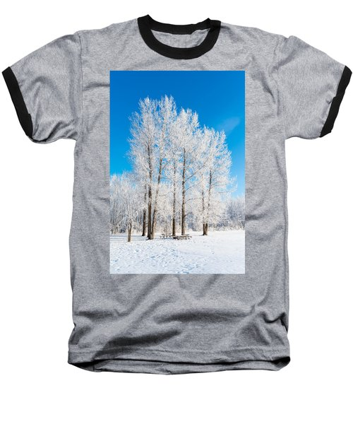 Frosty Wonderland Baseball T-Shirt