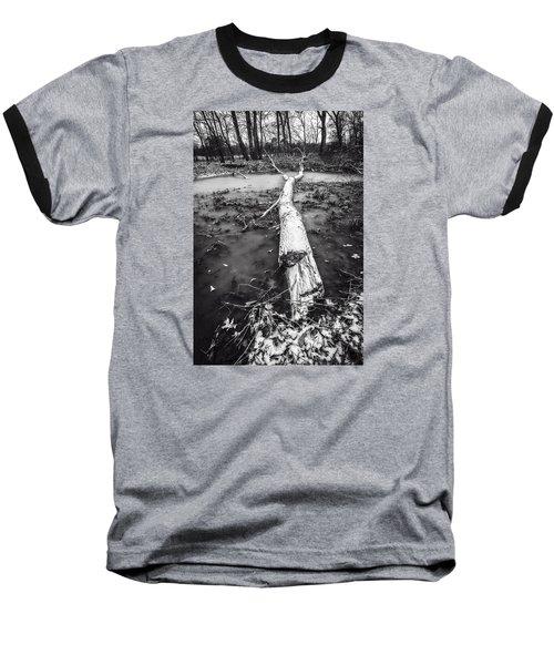 Frozen Landscape Baseball T-Shirt