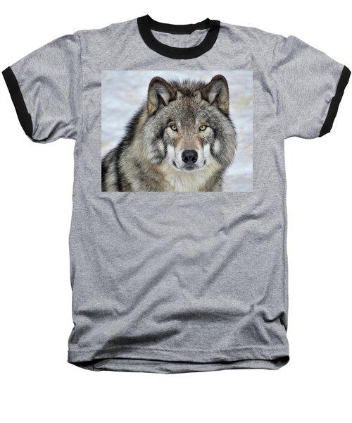 Full Attention  Baseball T-Shirt