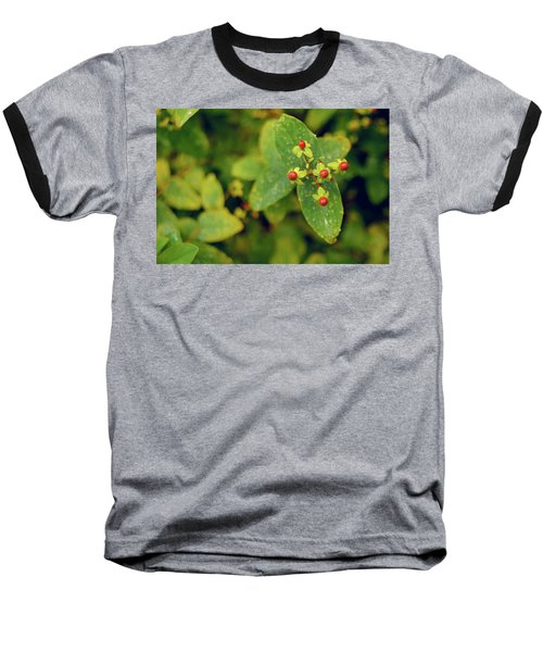 Fall Berry Baseball T-Shirt