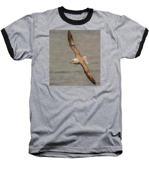 Fulmar In Flight Baseball T-Shirt