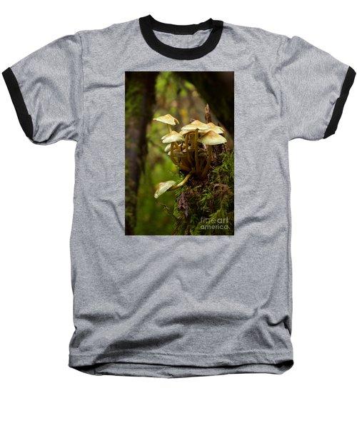 Fungal Blooms Baseball T-Shirt