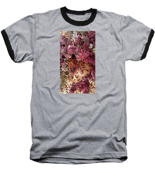 Fungus And Succulents Baseball T-Shirt