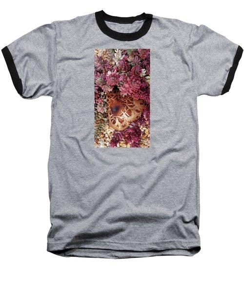 Fungus And Succulents Baseball T-Shirt