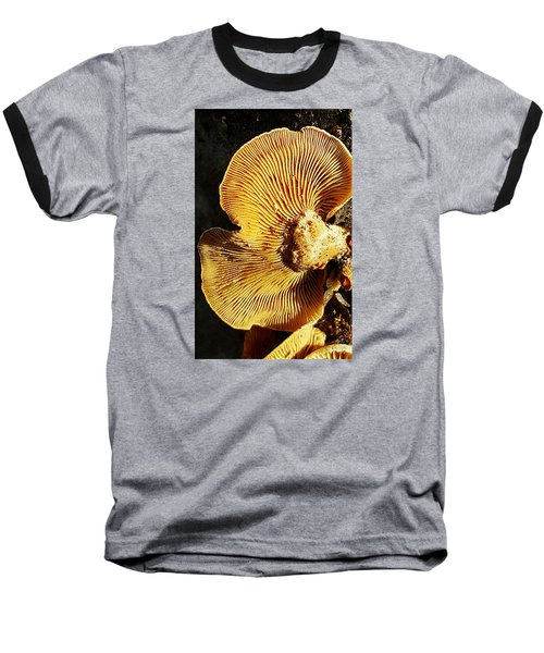 Fungus Baseball T-Shirt by Bruce Carpenter