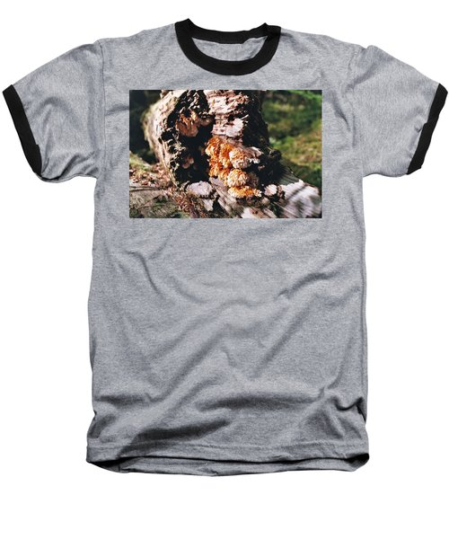 Fungus Is Beautiful Baseball T-Shirt