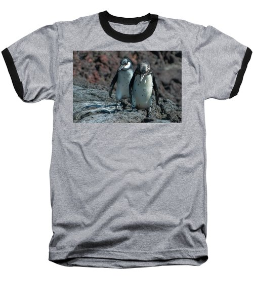 Galapagos Penguins  Bartelome Island Galapagos Islands Baseball T-Shirt