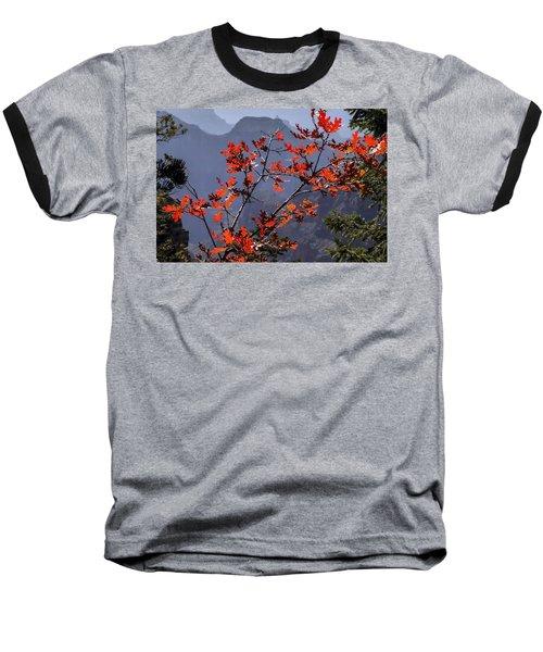 Gamble Oak In Crimson Fall Splendor Baseball T-Shirt