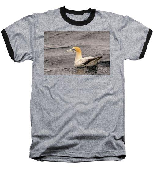 Gannet 5 Baseball T-Shirt