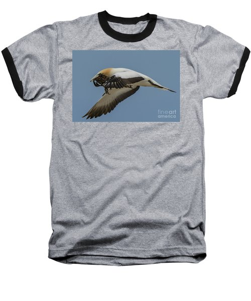 Baseball T-Shirt featuring the photograph Gannets 1 by Werner Padarin