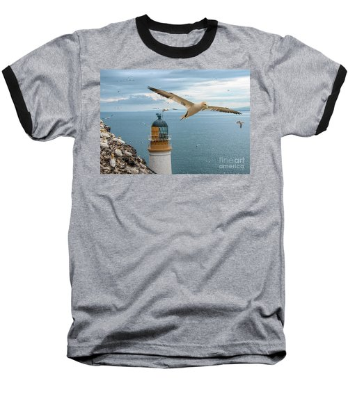 Gannets At Bass Rock Lighthouse Baseball T-Shirt