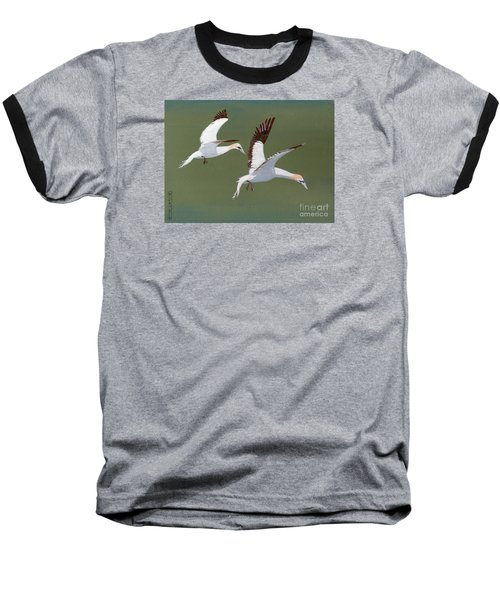 Gannets - Painting Baseball T-Shirt by Veronica Rickard