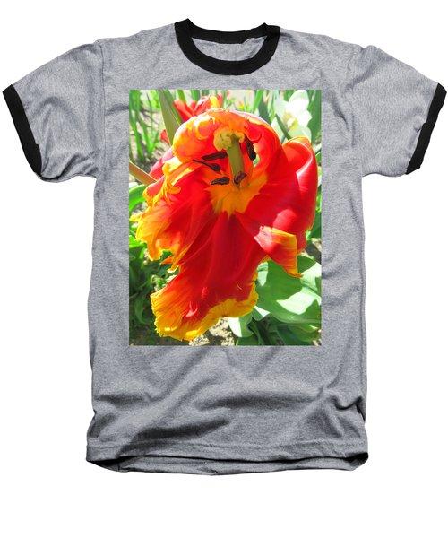 Garden Delight Baseball T-Shirt