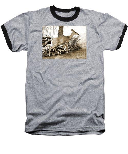 Garden Visitor Baseball T-Shirt by Betsy Zimmerli